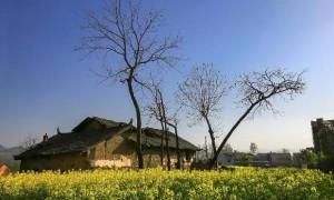 十一长假来汉阴开启一场欢乐又舒心的丰收之旅