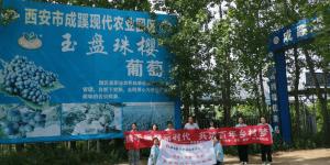 陕能院寻梦·逐梦·筑梦社会实践队开展探访乡村振兴领头人实践活动