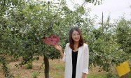 """西安海棠职业学院参加""""延安有我一棵(亩)苹果树""""认养活动"""