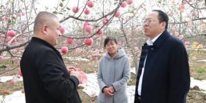西安海棠职业学院在结对帮扶村开展健康义诊活动