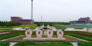 """西京学院:""""三招""""巩固主题教育成果  推动高质量发展"""