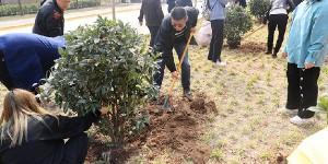 """咸阳师范学院开展""""师生共植一棵树,校园增添一片情""""植树活动"""